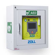 Wall-mounted defibrillator